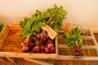 beets taken by joe chartier