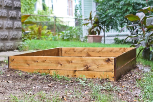 How To Build A Raised Garden Bed The Things I Think About