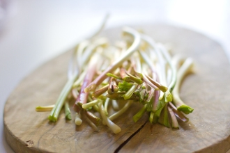 pickled ramps-15