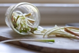 pickled ramps-17