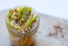 pickled ramps-22
