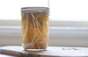pickled ramps-23